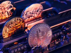 Kryptowalutowy portfel Exodus